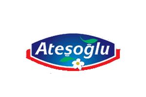 Atesoglu-logo